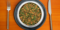 catador de alimentos para mascotas