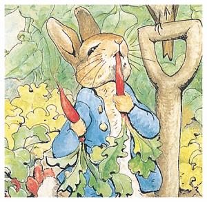 peter-rabbit-poniendose-morao-a-zanahorias