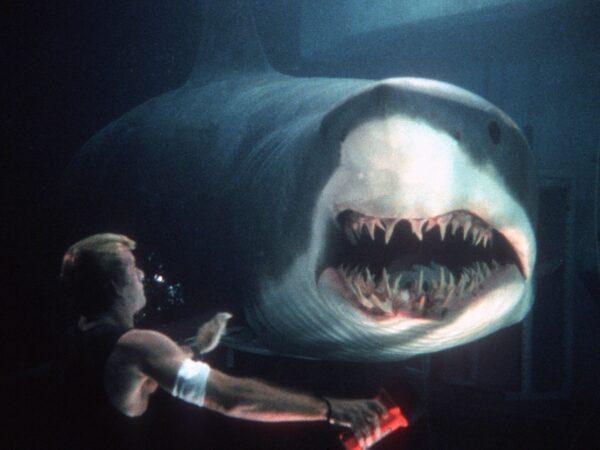 9 películas de tiburones para cogerle miedo al agua (Parte 1) 3