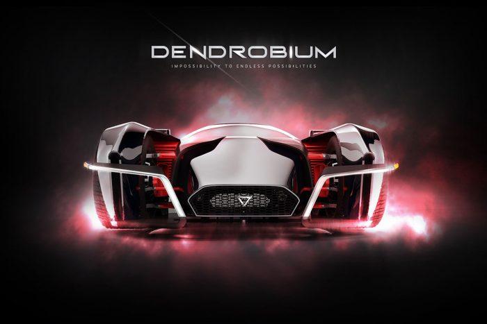 dendrobium2