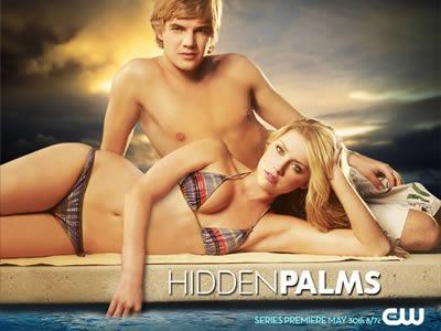hidden_palms3.jpg