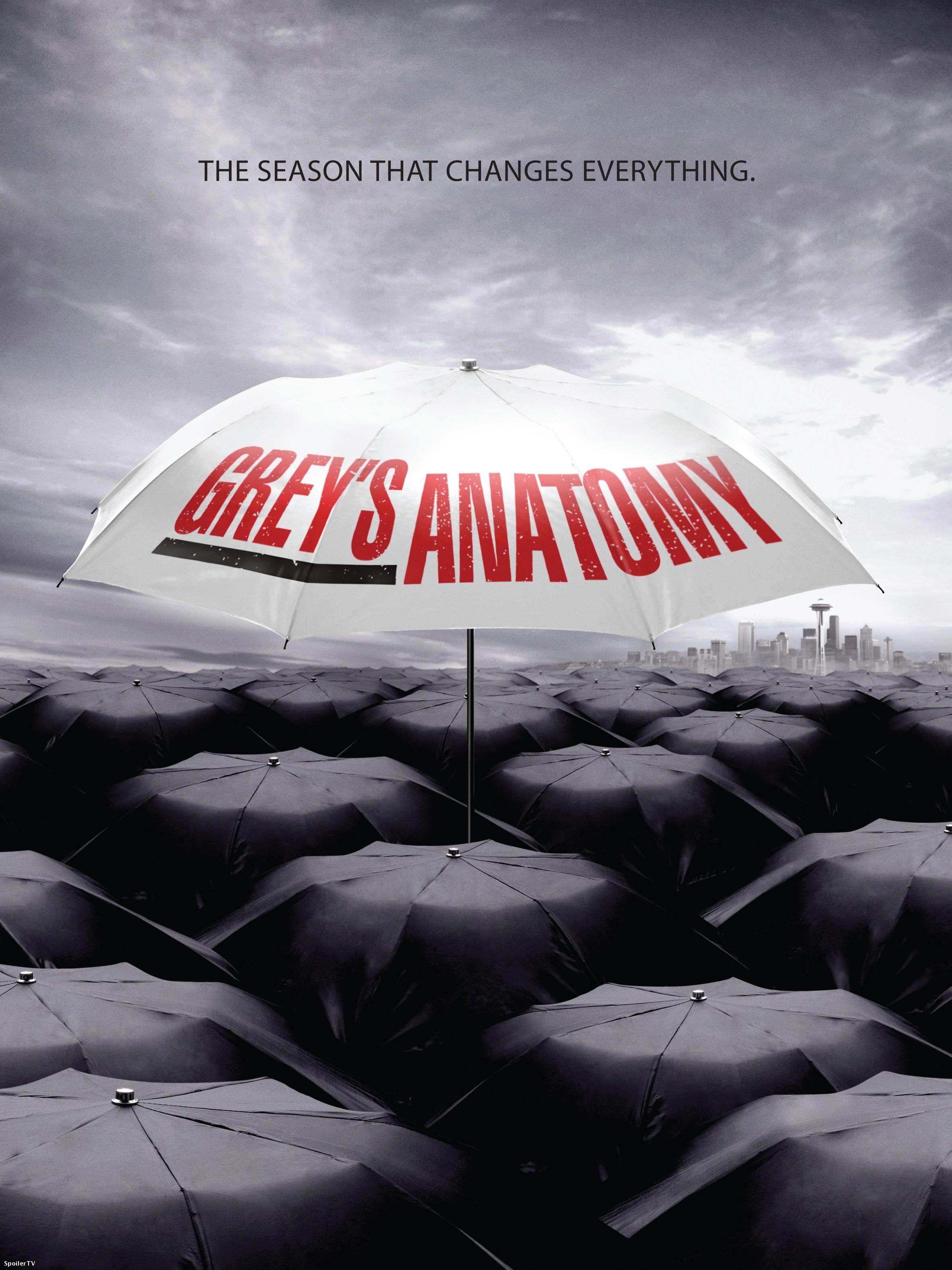 Sexta temporada de Anatomía de Grey: Poster promocional - Series Adictos