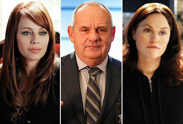 csi-series-finale-cast