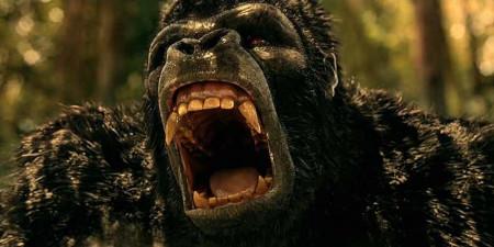 flash-season-2-gorilla-grodd