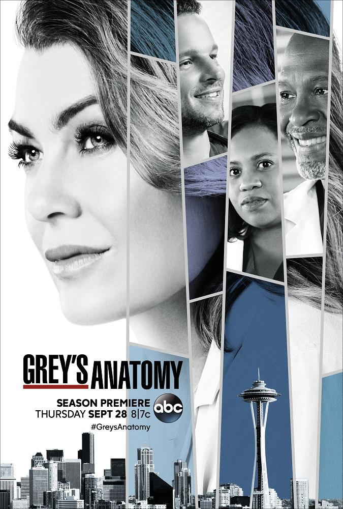 La decimocuarta temporada de Anatomía de Grey contará con un ...