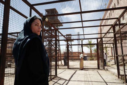 """Prison Break: Resurrection"" TV series - 2017"