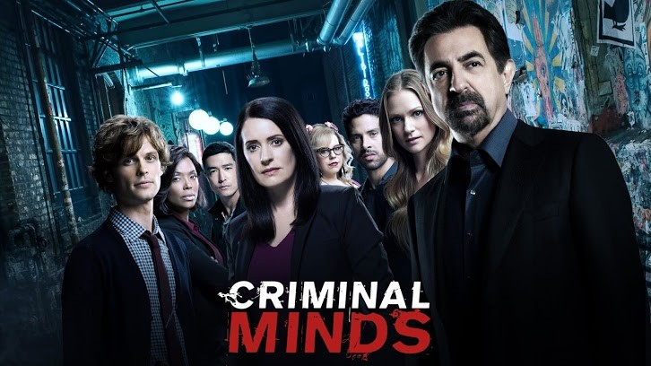 Mentes criminales 14x13 Espa&ntildeol Disponible